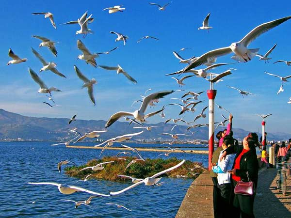 Dianchi Lake Scenic Area in Kunming