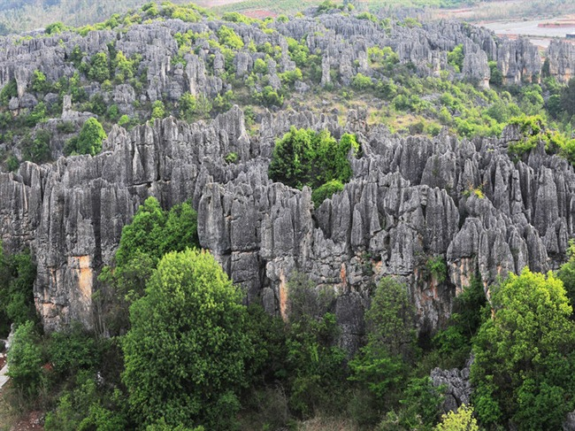 Naigu Stone Forest in Kunming
