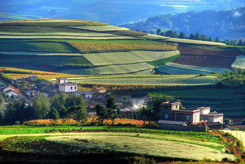 Wafang Liangzi Village of Dongchuan Red Land,Kunming