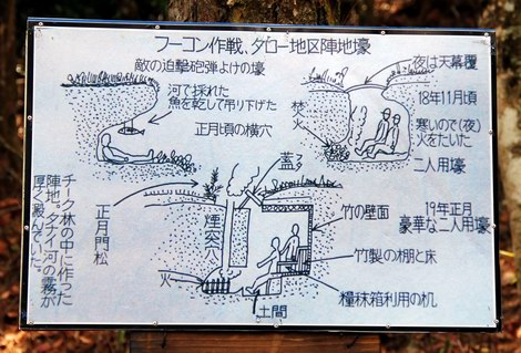 Picture of Japanese fortifications.